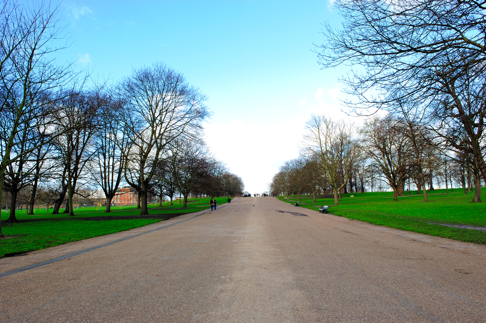 Find out more about Queens Gardens